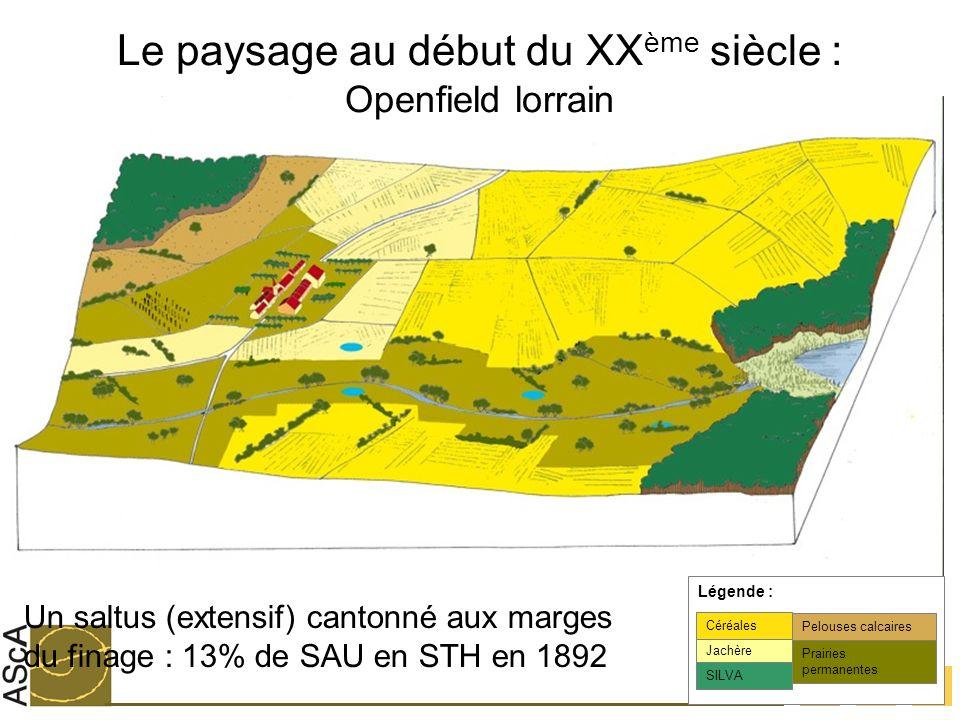 Le paysage au début du XXème siècle : Openfield lorrain