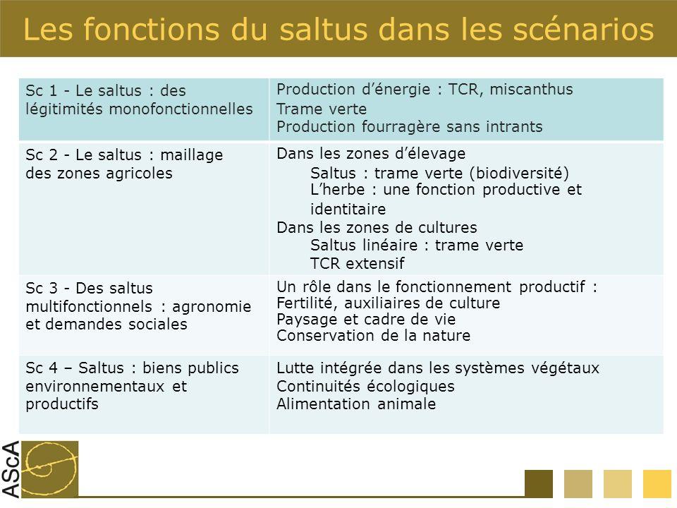 Les fonctions du saltus dans les scénarios