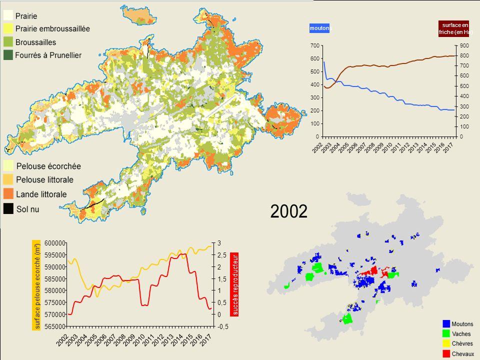 Ouessant Prévenir la perte de biodiversité