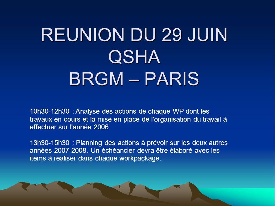 REUNION DU 29 JUIN QSHA BRGM – PARIS