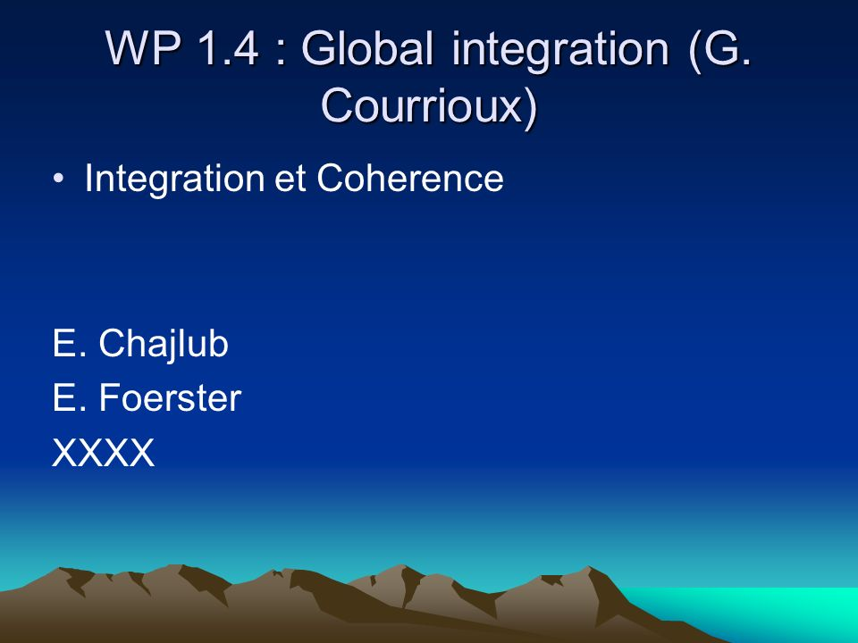 WP 1.4 : Global integration (G. Courrioux)