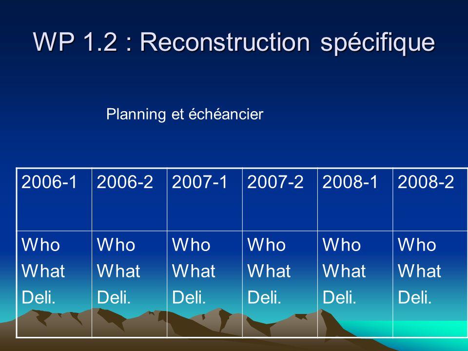 WP 1.2 : Reconstruction spécifique