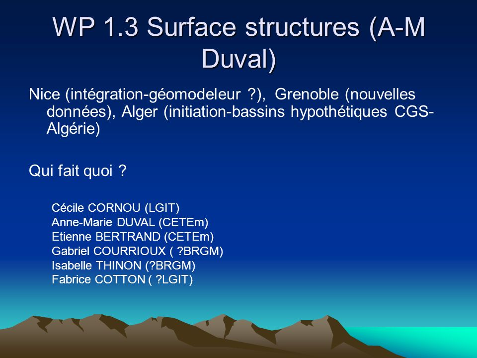 WP 1.3 Surface structures (A-M Duval)