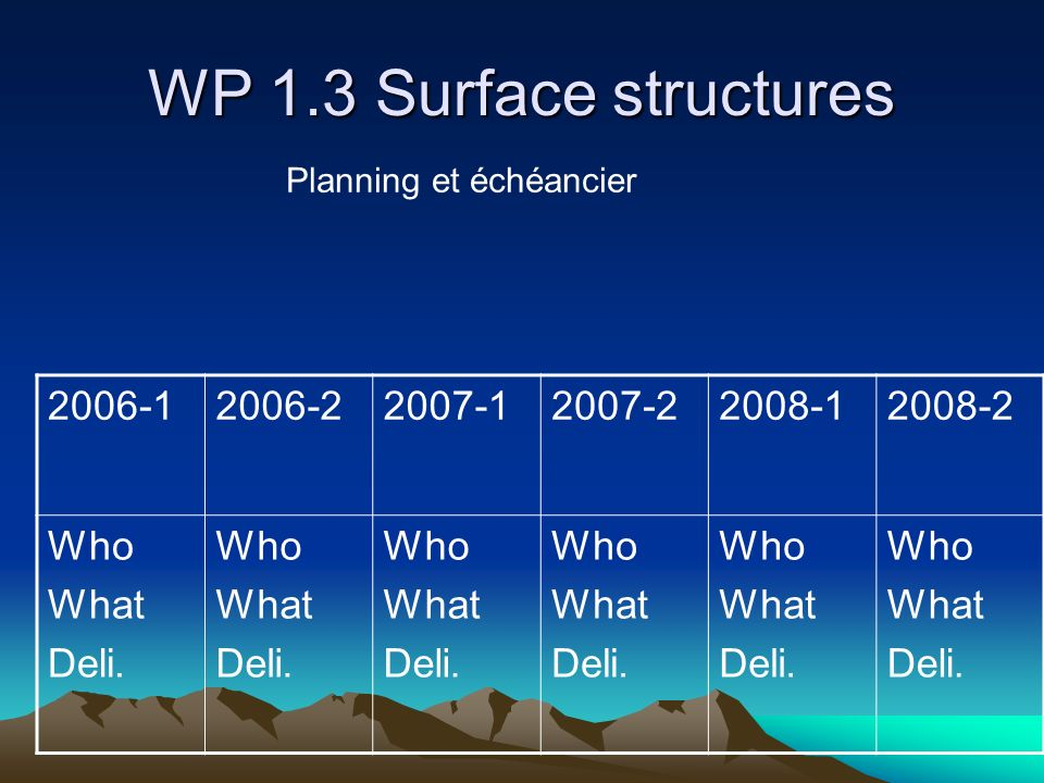 WP 1.3 Surface structures 2006-1 2006-2 2007-1 2007-2 2008-1 2008-2