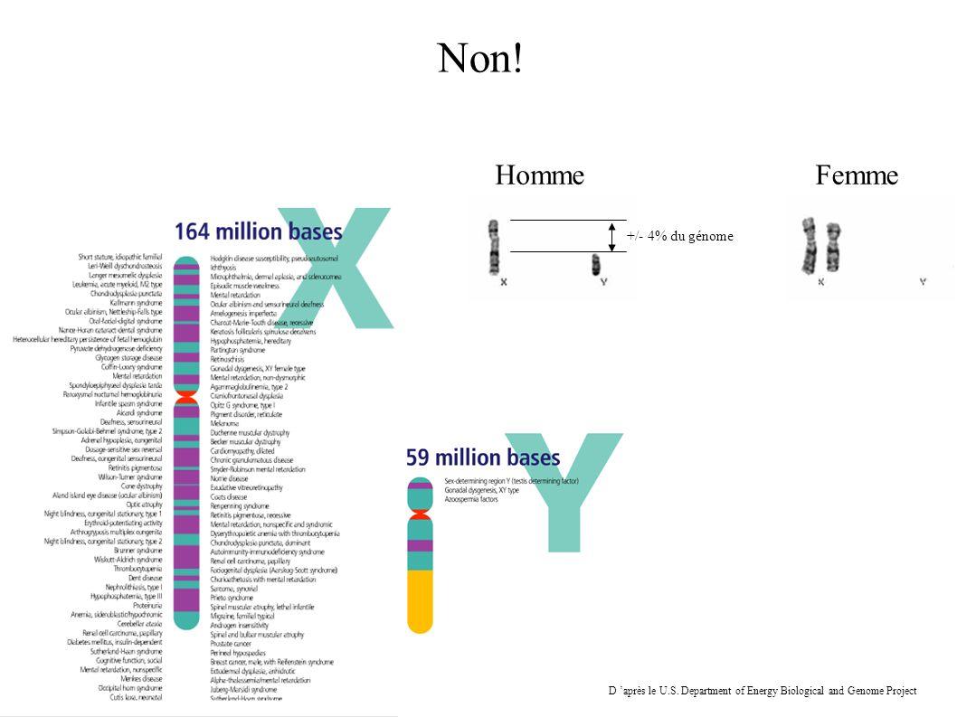 Non! Homme Femme +/- 4% du génome