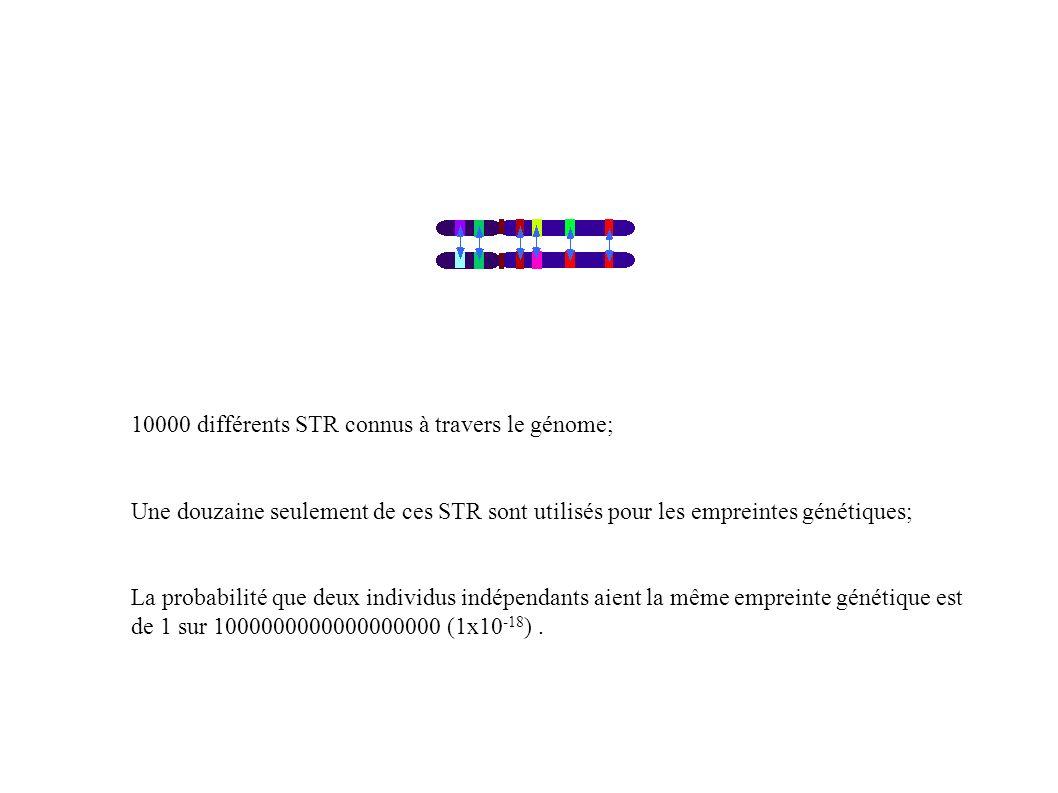 10000 différents STR connus à travers le génome;