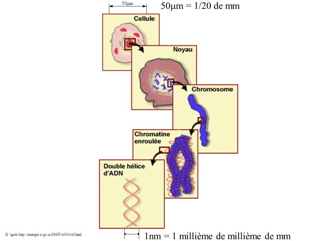 1nm = 1 millième de millième de mm