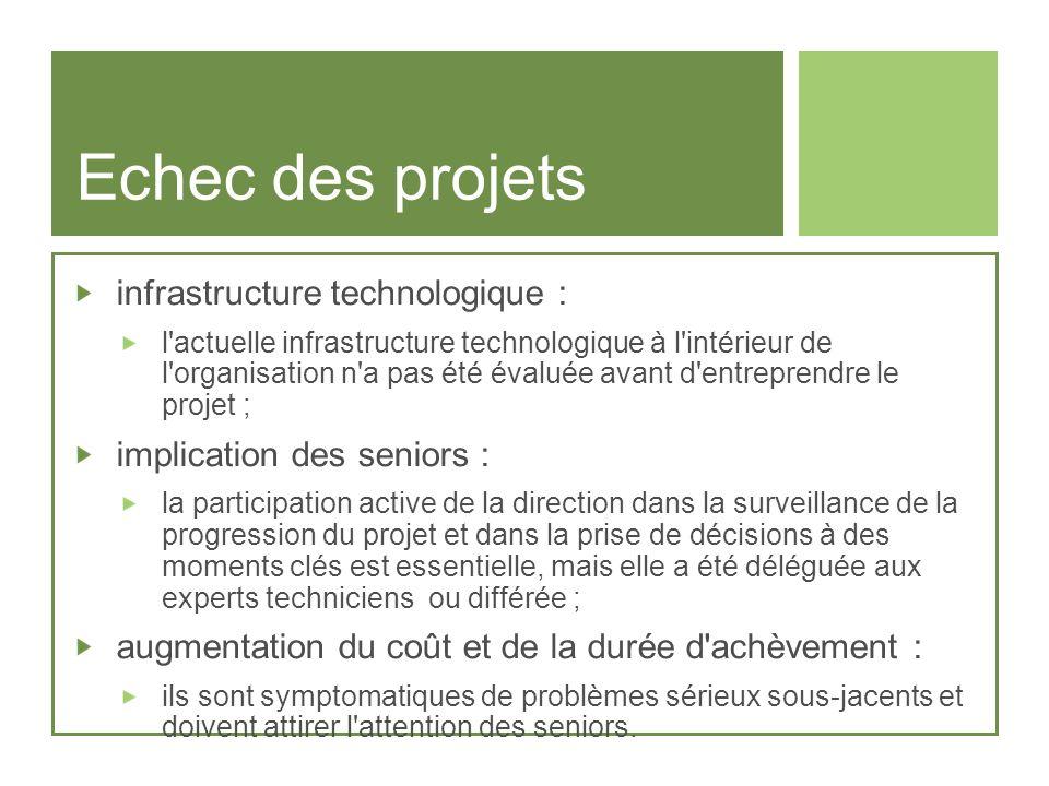 Echec des projets infrastructure technologique :