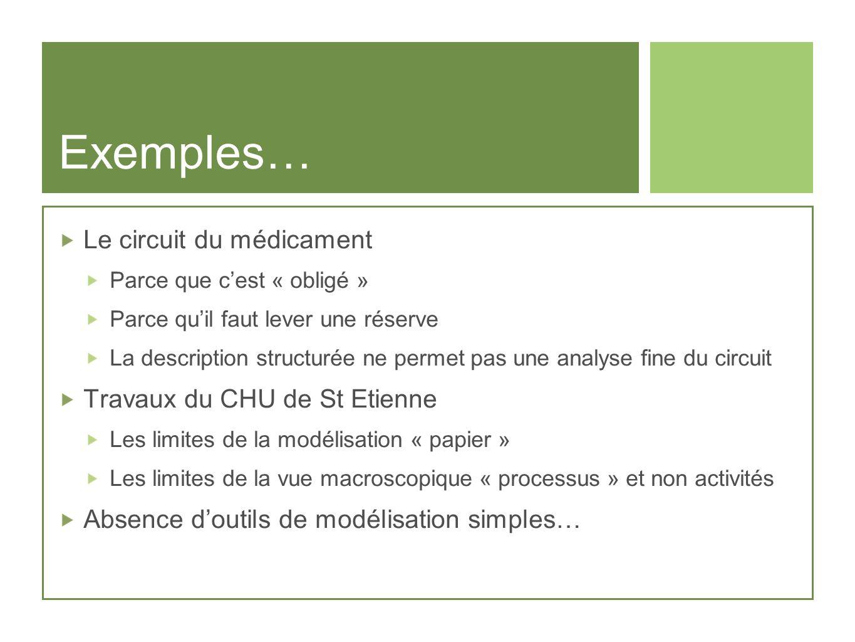 Exemples… Le circuit du médicament Travaux du CHU de St Etienne