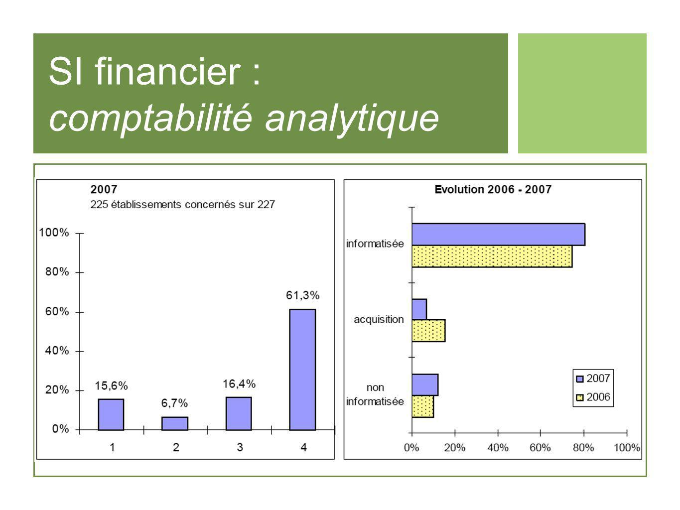 SI financier : comptabilité analytique