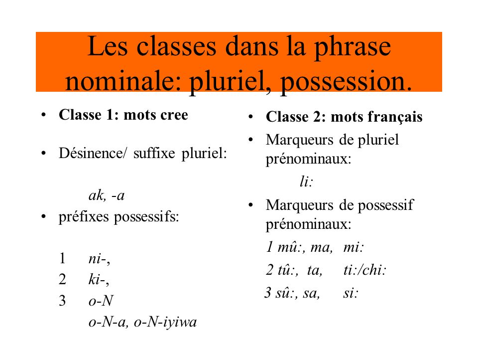 Les classes dans la phrase nominale: pluriel, possession.