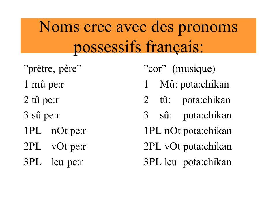 Noms cree avec des pronoms possessifs français: