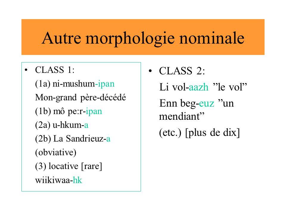 Autre morphologie nominale