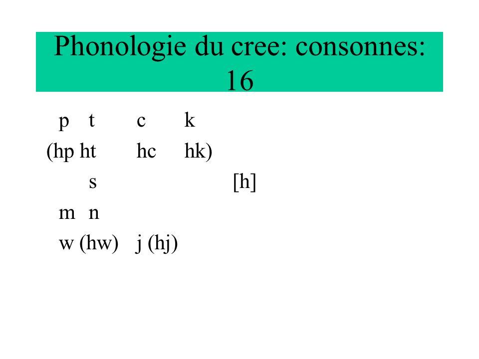 Phonologie du cree: consonnes: 16