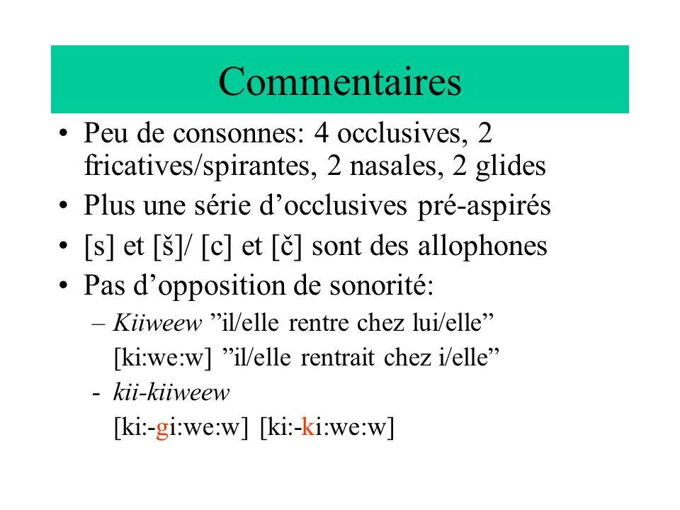 Commentaires Peu de consonnes: 4 occlusives, 2 fricatives/spirantes, 2 nasales, 2 glides. Plus une série d'occlusives pré-aspirés.