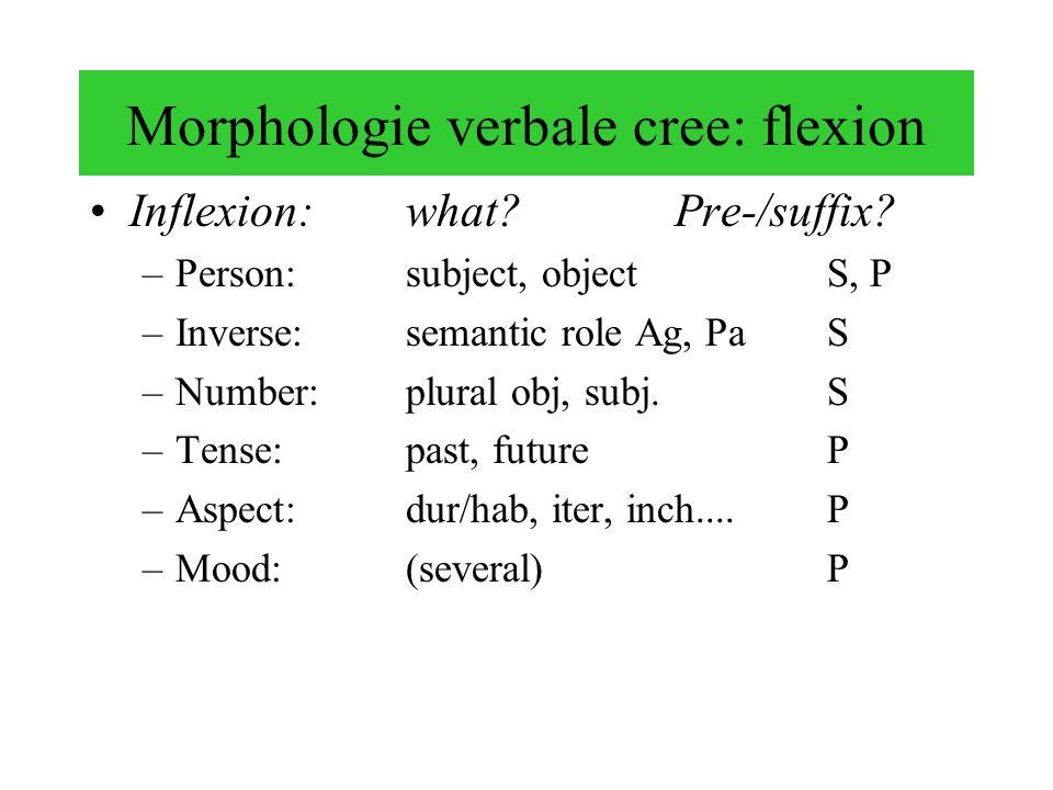 Morphologie verbale cree: flexion