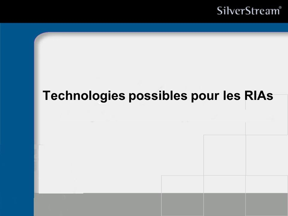 Technologies possibles pour les RIAs