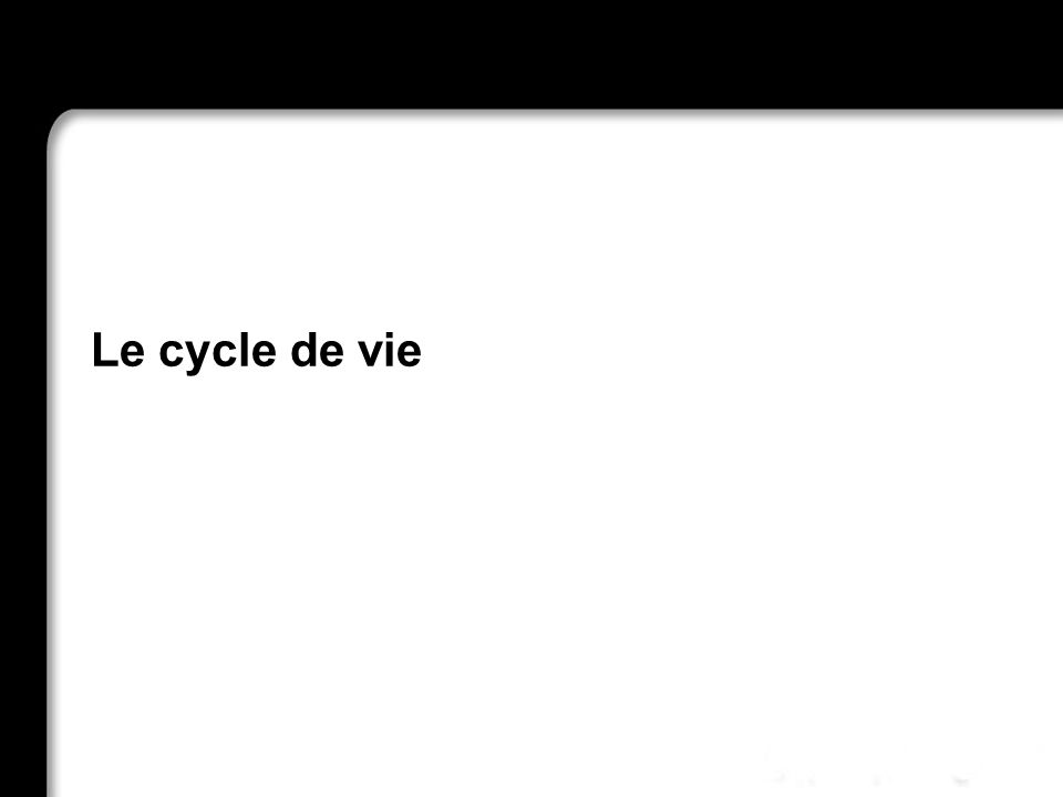Le cycle de vie 21/10/99 Richard Grin