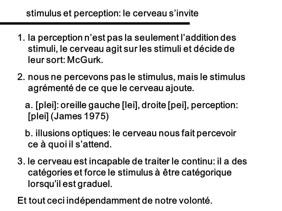 stimulus et perception: le cerveau s'invite