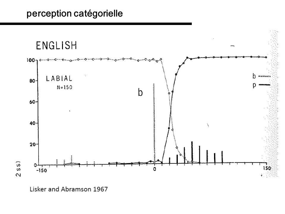 perception catégorielle