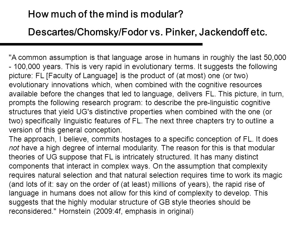 How much of the mind is modular