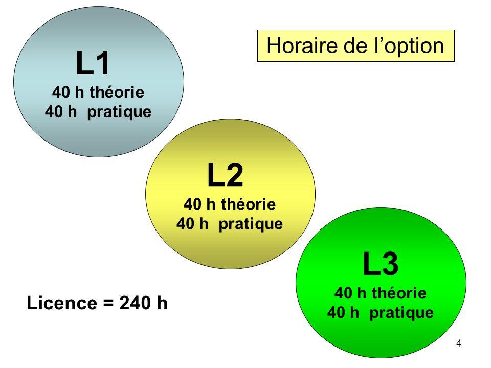 L1 L2 L3 Horaire de l'option Licence = 240 h 40 h théorie