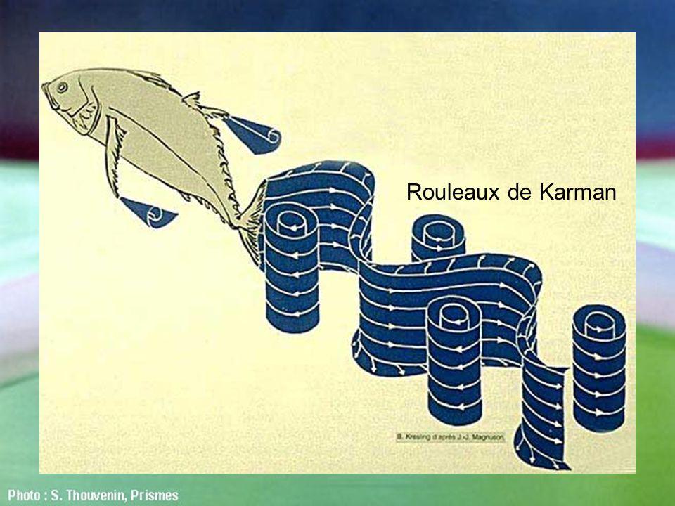 Rouleaux de Karman