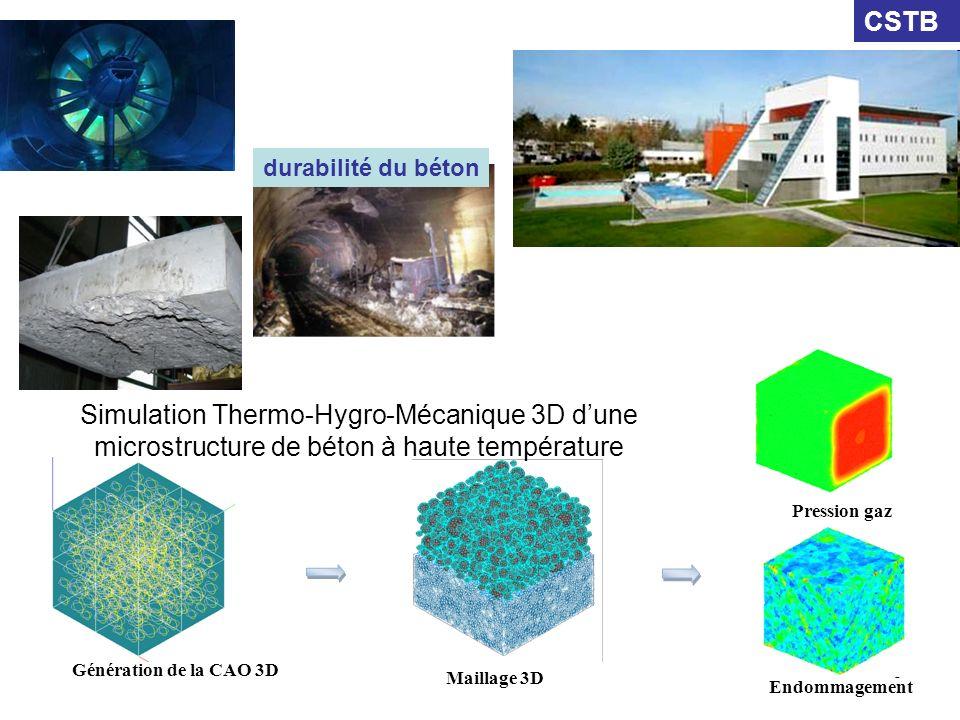 CSTB durabilité du béton. Simulation Thermo-Hygro-Mécanique 3D d'une microstructure de béton à haute température.