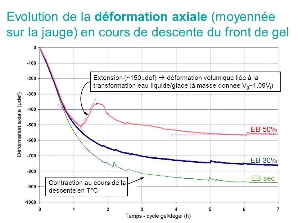 Evolution de la déformation axiale (moyennée sur la jauge) en cours de descente du front de gel