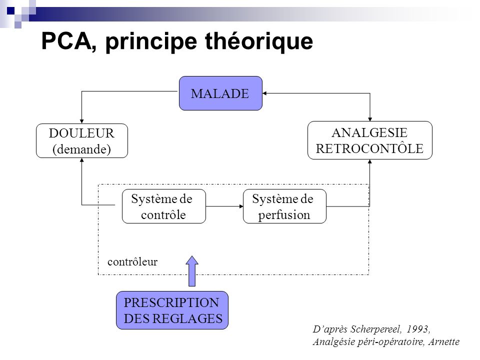 PCA, principe théorique