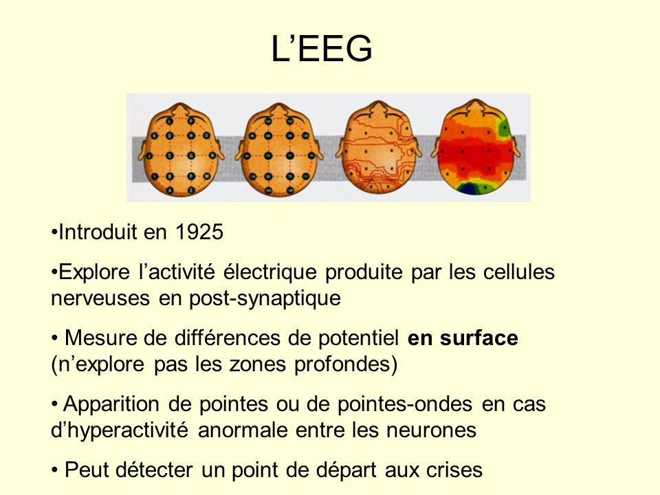 L'EEG Introduit en 1925. Explore l'activité électrique produite par les cellules nerveuses en post-synaptique.