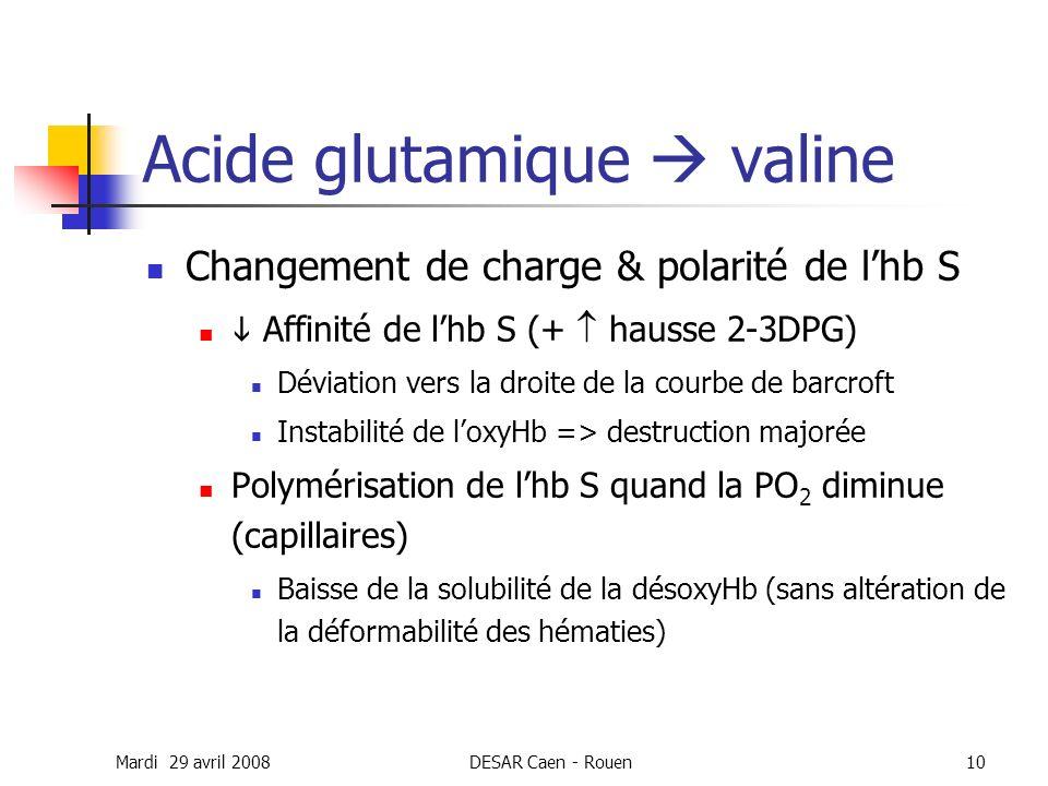 Acide glutamique  valine