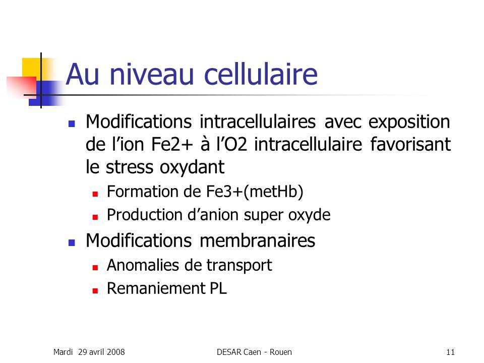 Au niveau cellulaire Modifications intracellulaires avec exposition de l'ion Fe2+ à l'O2 intracellulaire favorisant le stress oxydant.