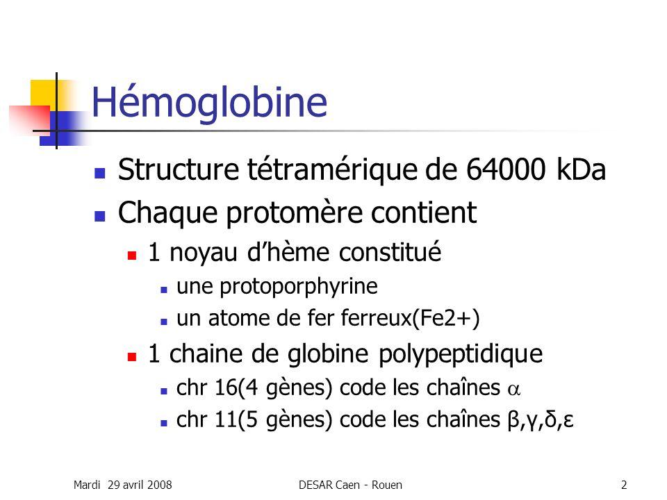 Hémoglobine Structure tétramérique de 64000 kDa