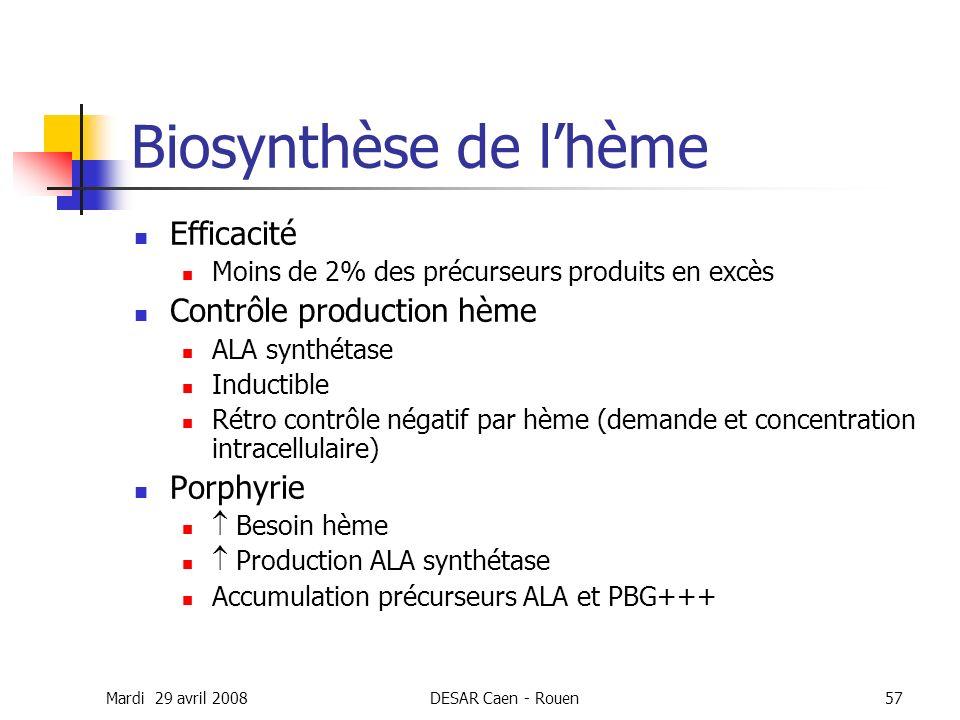 Biosynthèse de l'hème Efficacité Contrôle production hème Porphyrie