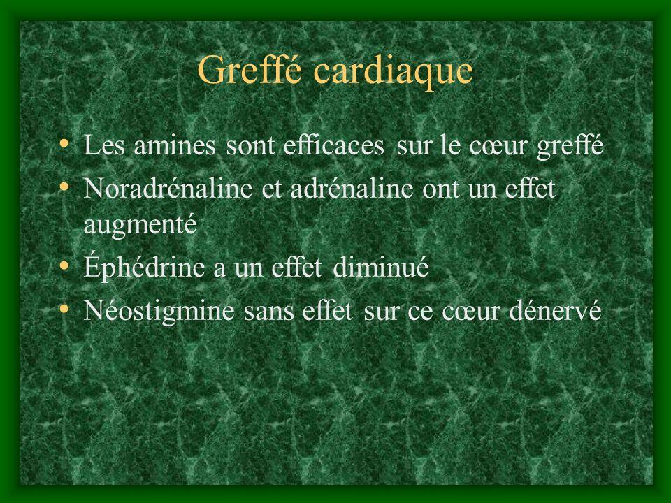 Greffé cardiaque Les amines sont efficaces sur le cœur greffé