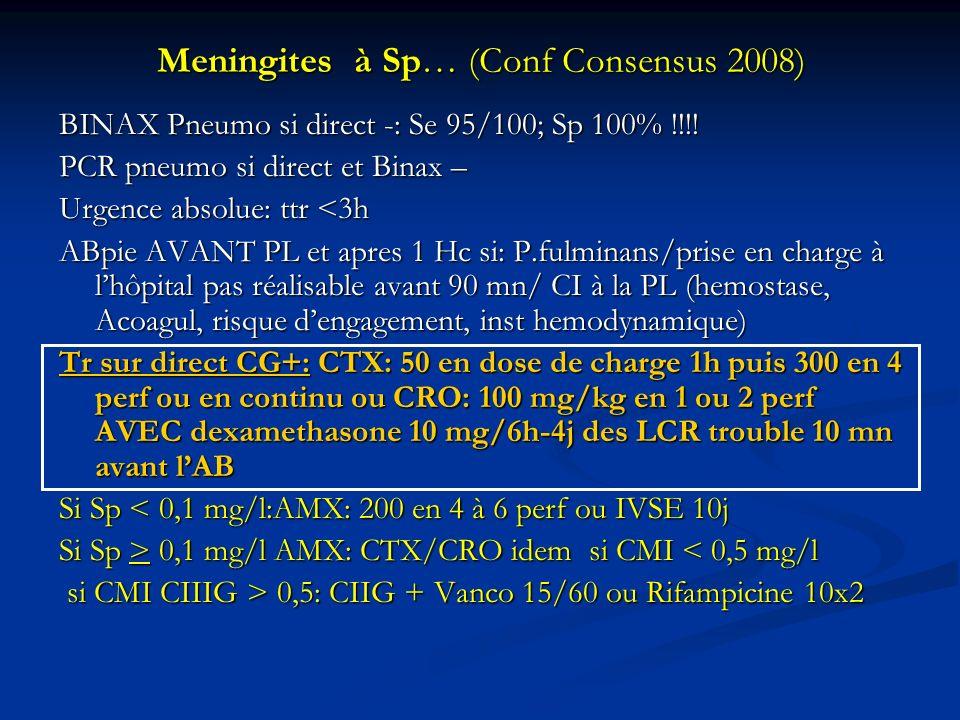 Meningites à Sp… (Conf Consensus 2008)