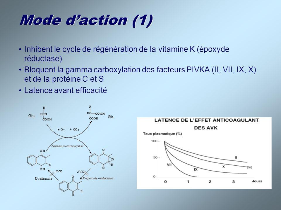 Mode d'action (1) Inhibent le cycle de régénération de la vitamine K (époxyde réductase)