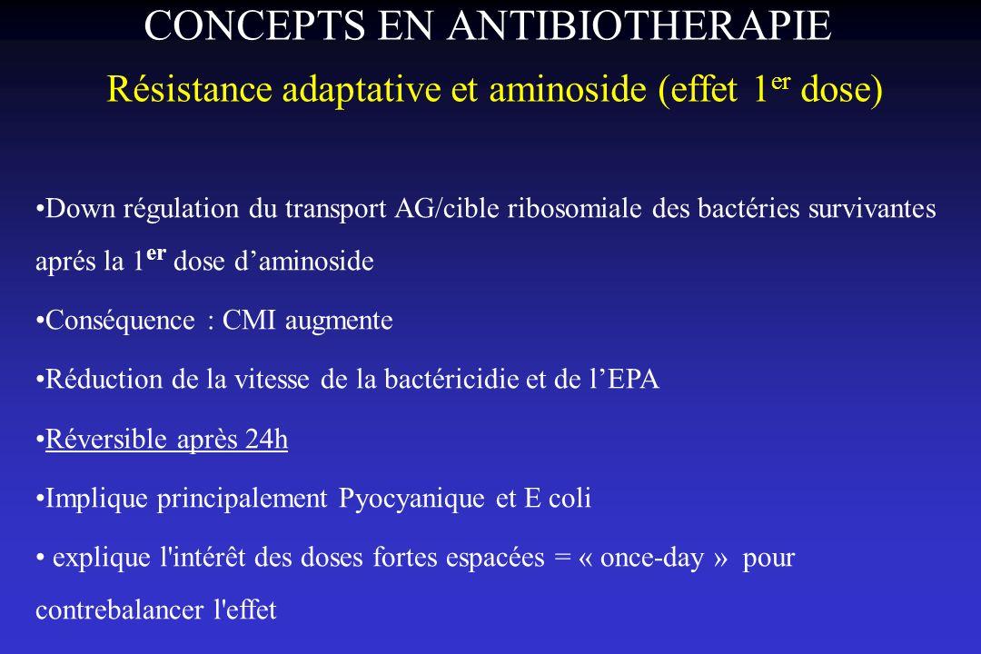 CONCEPTS EN ANTIBIOTHERAPIE Résistance adaptative et aminoside (effet 1er dose)