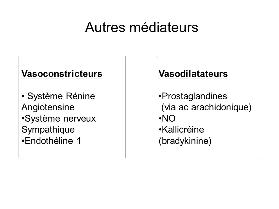 Autres médiateurs Vasoconstricteurs Système Rénine Angiotensine