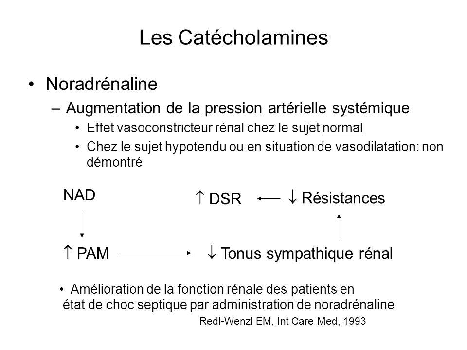 Les Catécholamines Noradrénaline