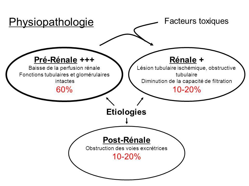 Physiopathologie Facteurs toxiques Pré-Rénale +++ 60% Rénale + 10-20%