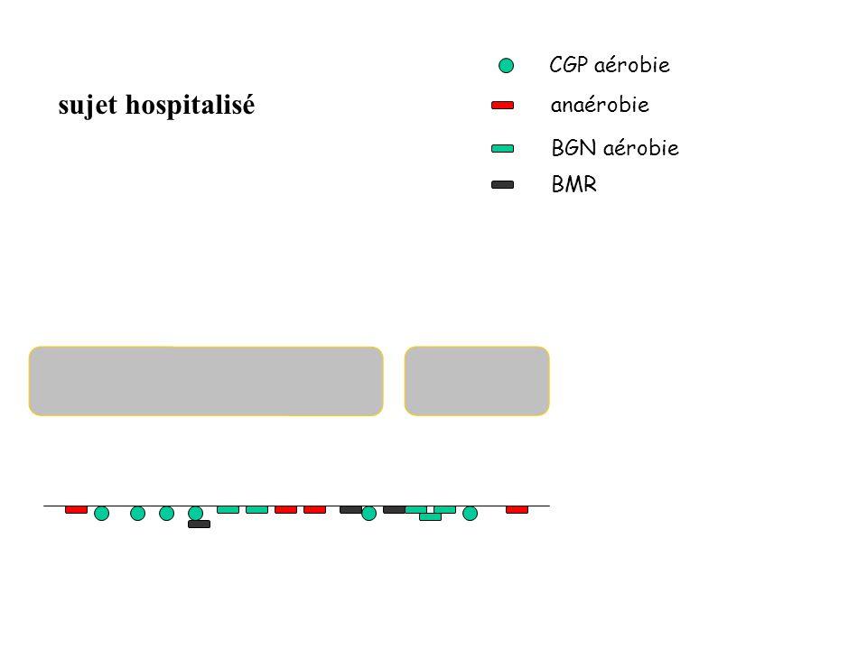 CGP aérobie sujet hospitalisé anaérobie BGN aérobie BMR