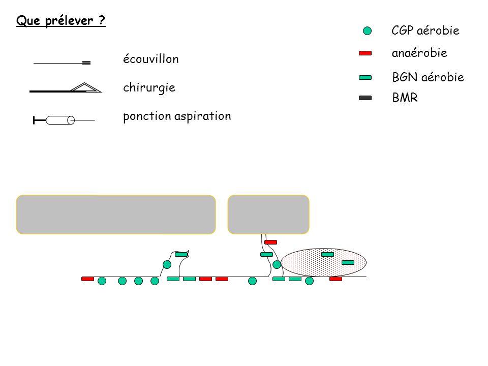 Que prélever CGP aérobie anaérobie écouvillon BGN aérobie chirurgie BMR ponction aspiration