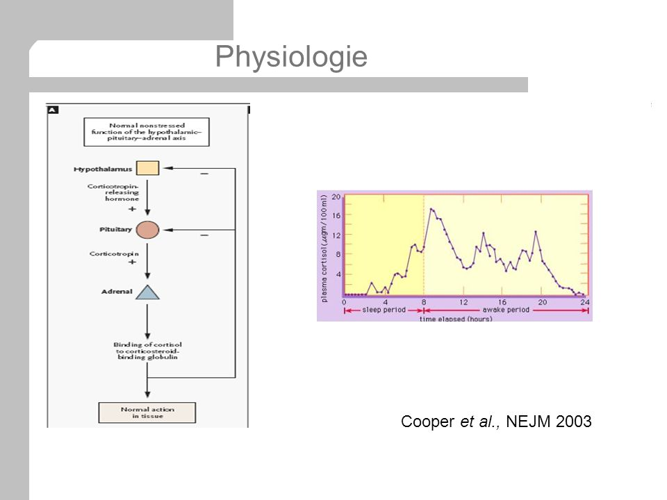 Physiologie Cooper et al., NEJM 2003