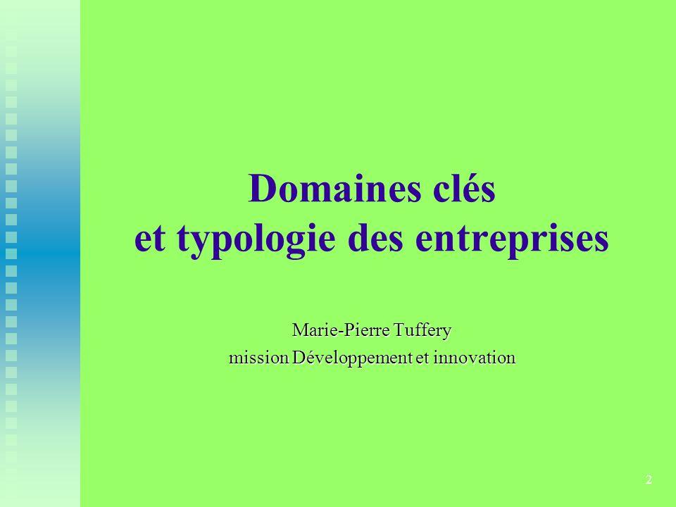 Domaines clés et typologie des entreprises