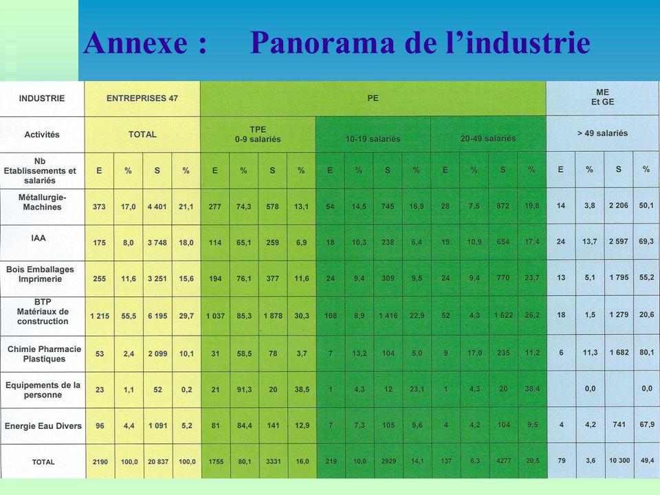 Annexe : Panorama de l'industrie