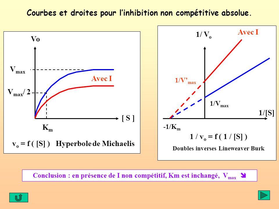 Courbes et droites pour l'inhibition non compétitive absolue.