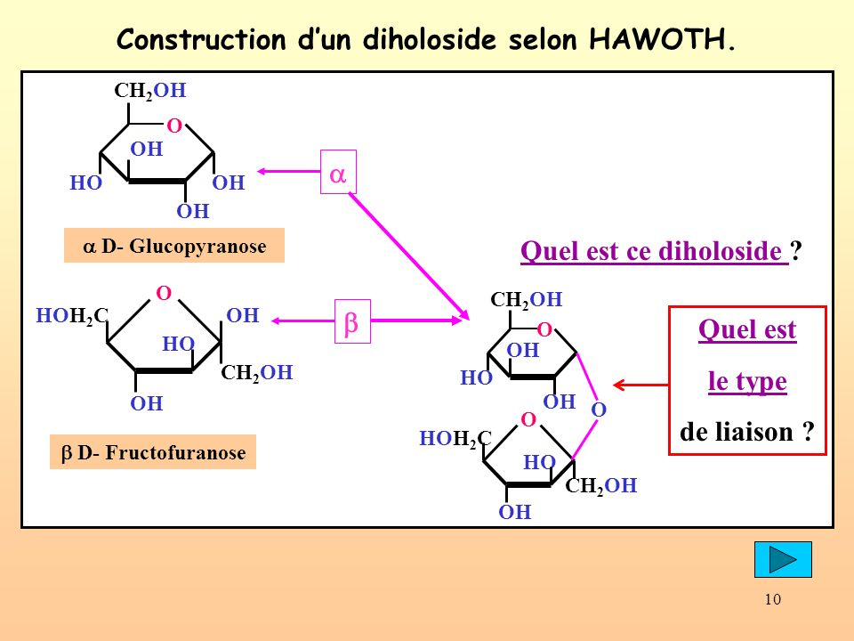 Construction d'un diholoside selon HAWOTH.