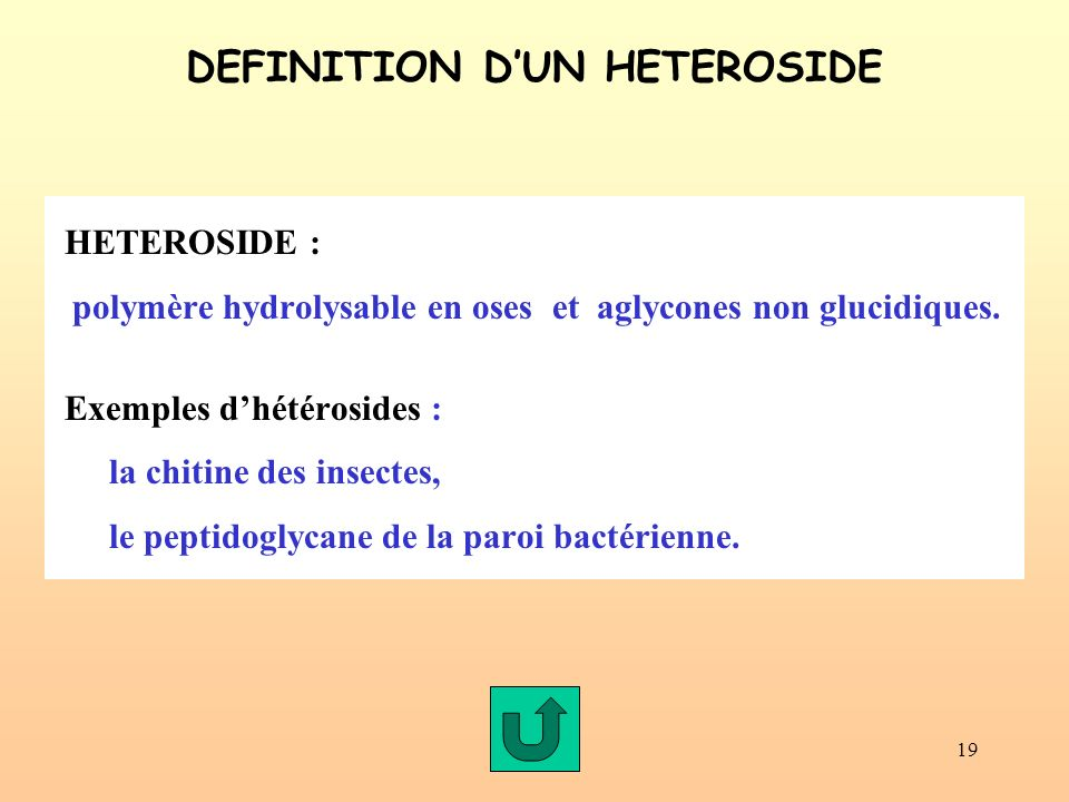 DEFINITION D'UN HETEROSIDE